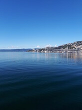 Vogeltown Wellington New Zeala...