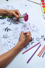 Anonymous Artist Drawing Flowers On Paper