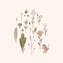 Botanical Composition