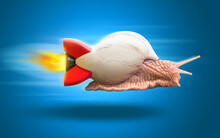 Snail Flying Fast With Rocket Shell. Business Career Innovation Success Concept.