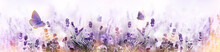 Purple Blossoming Lavender And...