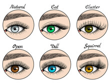 Kinds Of Lashes Sets On Blue, Green, Grey And Brown Eyes With Brows