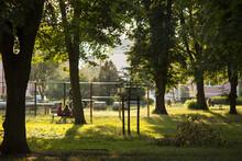 Letnie Popołudniowe Słońce W Parku Miejskim