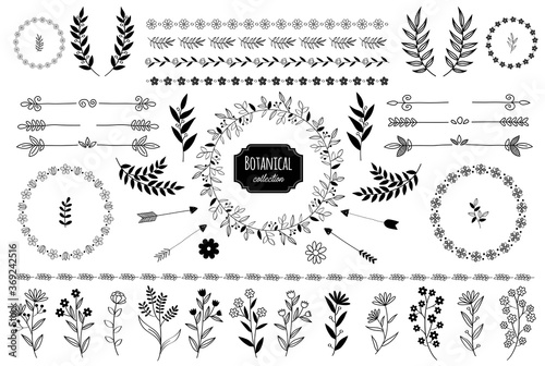 Fotografering Hand drawn vector floral elements