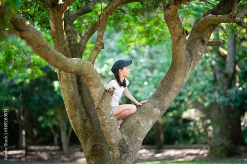 Valokuva 木登りをする女の子