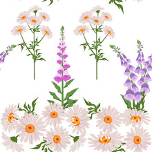 Delicate Foxglove And Chamomile On A White Background. Seamless Vector Illustration.