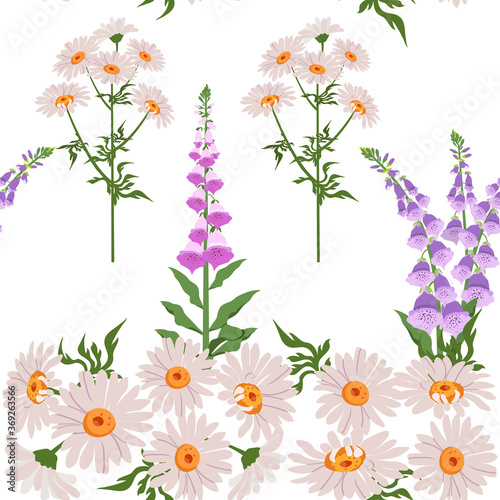 Photo Delicate foxglove and chamomile on a white background