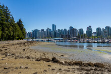 The Vancouver Skyline And Stanley Park Sea Wall At Low Tide In Summer