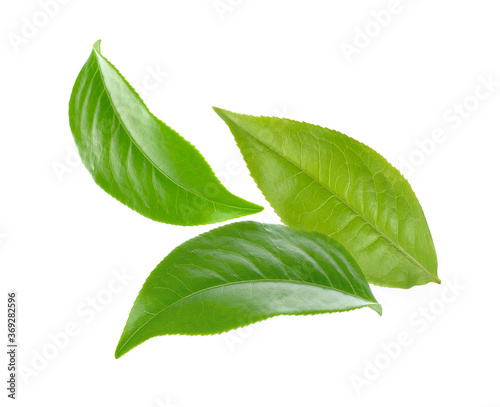 Fototapety, obrazy: tea leaves on white background