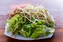 Green Mung Bean Sprouts Are A Culinary Vegetable