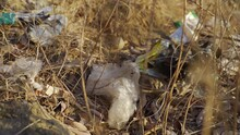 Plastic Trash On The Soil Surrounded By Rocks, Dry Twigs And Leaves