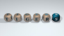 Tigers Combined By Dice Letters And Color Crossing For The Related Meanings Of The Concept. Illustration And Animal