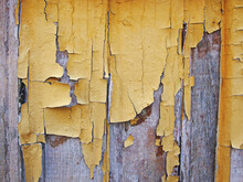 A Layer Of Old Peeling Yellow ...