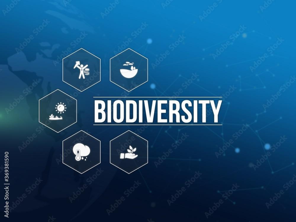 Fototapeta biodiversity