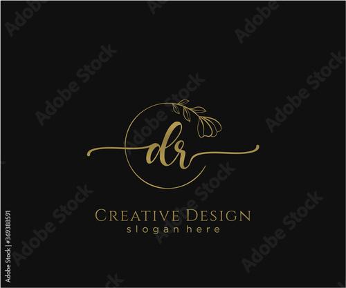 Initial DR beauty monogram and elegant logo design Wallpaper Mural