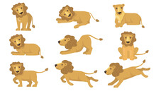 Cartoon Lion Actions Set. Funny Yellow Animal With Tail Standing, Lying, Playing, Running, Hunting. Vector Illustration For Feline, Safari, Pride, Africa Concepts