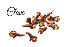 Dried Cloves Heap. Hand Drawn Watercolor Illustration, Isolated On White Background