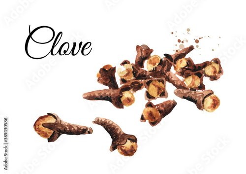 Leinwand Poster Dried Cloves heap