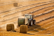 A Tractor Forms Bales On The Hills Of Straw Field , Stork Birds