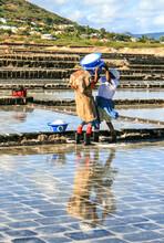 Arbeiterinnen Bei Der Meersalzgewinnung Bei Tamarin, Mauritius