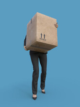 Business Woman Carries A Large Heavy Cardboard Box