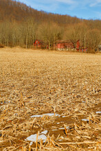 Abandoned Farm In Winter With ...