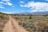 Dirt road in the Sierra Nevada