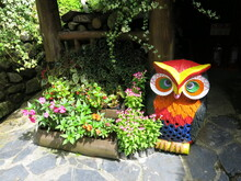 The Beautiful Gardening And Colorful Wooden Owl Decoration With Bright Light