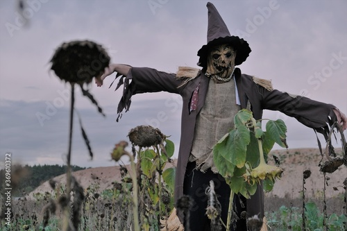 Obraz na plátně Halloween celebration concept