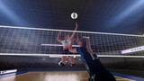 Female professional volleyball players in action on 3d stadium.