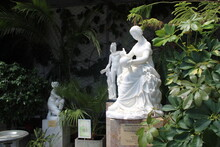 Beautiful Statue Of A Girl In The Winter Garden In The Palace. Winter Garden. Green Plants In Pots