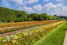 Garden Of The Plants (Jardin Des Plantes, 1889) - Main Public Botanical Garden In Paris, France. Flowers In Garden. Paris, France.