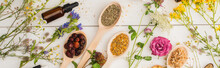 Panoramic Shot Of Herbs In Spoons Near Flowers And Bottle On White Wooden Background, Naturopathy Concept