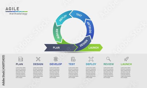 Agile development process infographic Wallpaper Mural