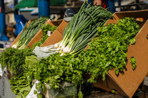 Stall with fresh and organic spring onion, bunches of parsley and dill in the sunlight of the outdoor market Fototapeta