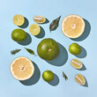 Top shot of pattern of citrus summer composition of whole and sl
