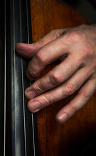 Close-up Of A Hand On The Strings Of A Cello