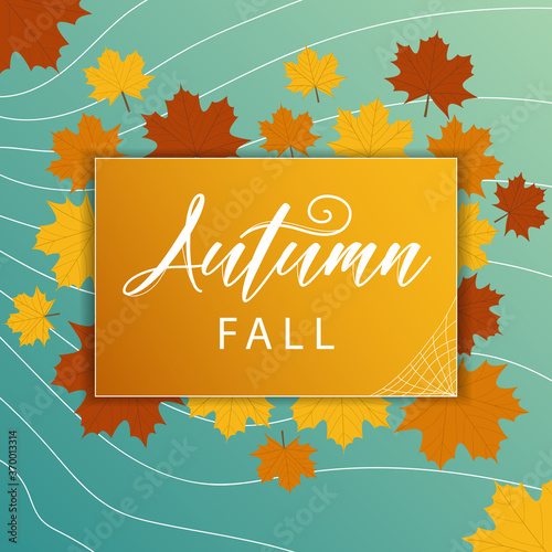 Fototapeta Abstract autumn sale background with falling leaves for special offer or promotion discount poster with frame for text and logo. Promo banner with pattern in autumn colors theme. Vector illustration. obraz na płótnie