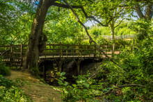 A View Of A Wooden Bridge Over A Tributary To The River Medway In Ashdown Forest, Sussex, UK