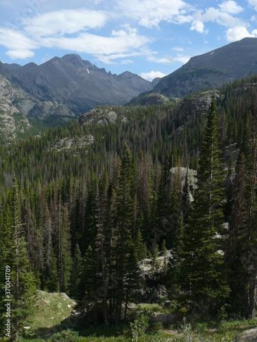 beautiful mountain landscape in summer - 370041709