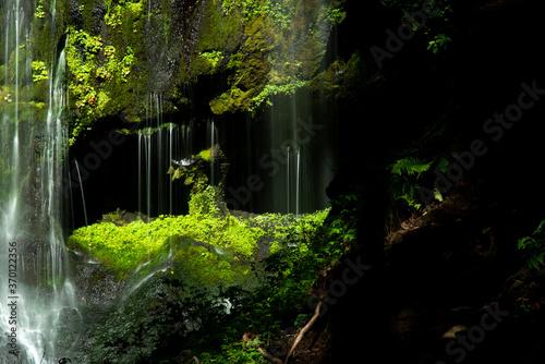 涼やかな滝  不易の滝 © rai