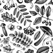 Hand Sketched Autumn Plants Se...