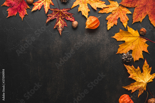 Obraz Autumn composition made of fall leaves, flowers, nuts, pine cones on black background. Flat lay, top view - fototapety do salonu