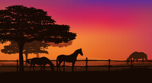 Herd Of Grazing Horses Behind Wooden Fence - Sunset Field And Trees Vector Silhouette Landscape