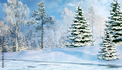 Winter background with snowy fir tree. Morning winter forest. #370169395