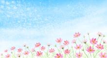 うろこ雲にコスモス畑 水彩イラスト