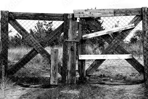 Stara brama wjazdowa do sadu z drzewami owocowymi - zdjęcie czarno-białe