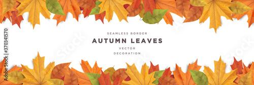 Fototapeta Beautiful autumn leaves decorative seamless border frame vector template  obraz
