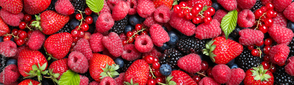Mix of different fresh berries as background, banner design