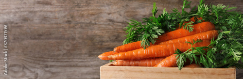 Obraz Crate of fresh carrots on wooden background, closeup with space for text. Banner design - fototapety do salonu